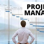IT Project Manager (Software)